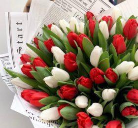 51 тюльпан в оформлении
